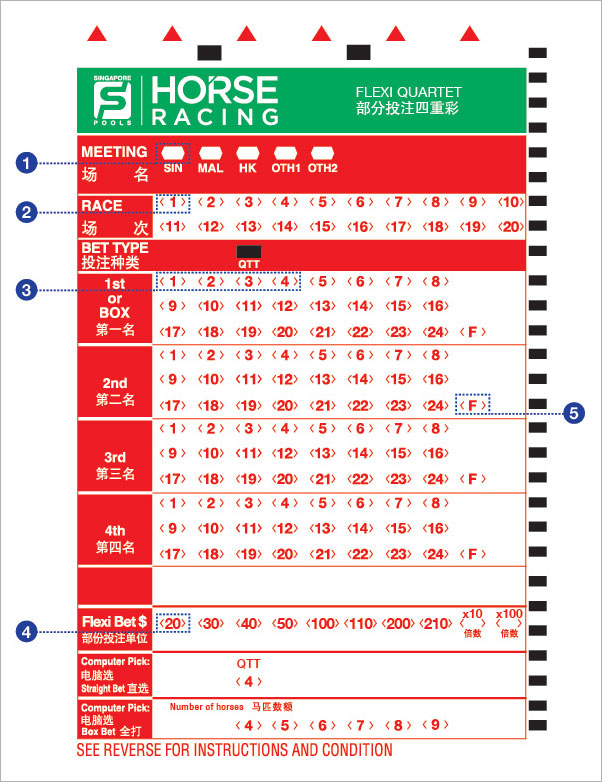 singapore pools 4d betting horse